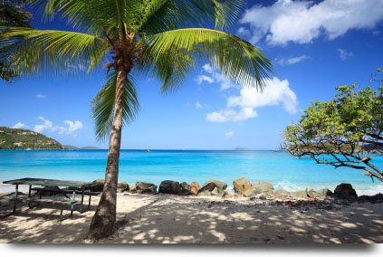 The Saint John Weather is Perfect in the View of Your Caribbean Island Vacation on Cinnamon Bay Beach