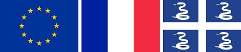 All of the flags of Martinique